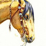 Valerie Coe - Drawing and Painting Horses in Watercolor