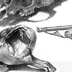 "The Brinton Museum - Martin Garhart: ""The Still Life as Personal Metaphor"""