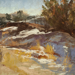 Marcie Cohen - Pastel Society of Colorado Small Works Juried Show and Sale