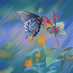Mary Ann Pals - Painting with Pastels    (in-person)