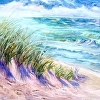 indiana-dunes-one