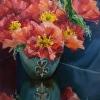 Poppies & Turquoise