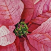 PINK POINSETTIA for tutorial