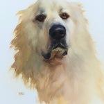 Cary Jurriaans - JOHANNE MANGI, Painting Dynamic Dog Portraits