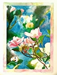 "Pink Dogwood with border by Don Sinish Watercolor ~ 16.25"" x 11.5"""