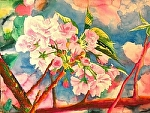 "Cherry Blossoms by Don Sinish Watercolor ~ 18"" x 24"""