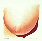 "Uniboob by Don Sinish colored pencil ~ 5"" x 5"""