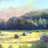Boxley Valley Hay Bales