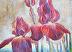 Red Iris by Don Kitz