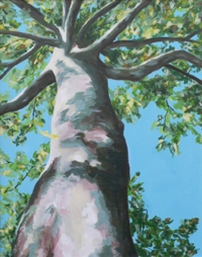 Proud Sycamore by Jeanne Guerin-Daley Acrylic ~ 20 inches x 16 inches