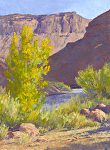 Aspen & Canyon Shadow by Lee McVey Pastel ~ 16 x 12