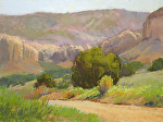 Juniper and the Cliffs by Lee McVey Pastel ~ 9 x 12