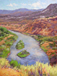 Chama River View by Lee McVey Pastel ~ 12 x 9