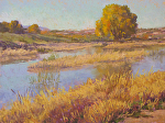 Autumn Wetlands by Lee McVey Pastel ~ 12 x 16