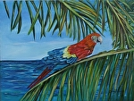 Scarlet Macaw by Amy Brown Oil ~ 11 x 14