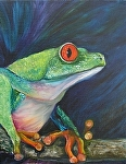 Big Eyed Tree Frog Profile by Amy Brown Oil ~ 14 x 11