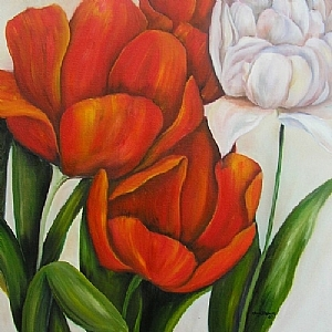 """Red and white Tulips by Amy Brown Oil ~ 24"""" x 24"""""""