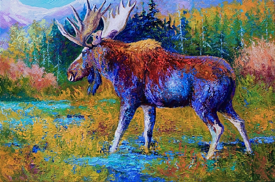 Autumn Glimpse - Moose - Oil