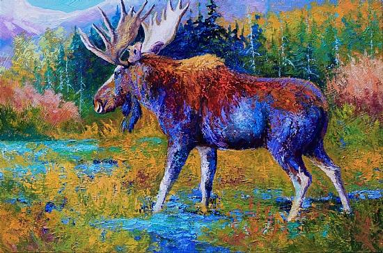 Autumn Glimpse - Moose - Oil