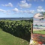 Kristen Olson Stone - Plein Air Paint In Kailua, Hawaii