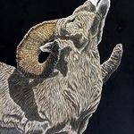 Joe Watkins - Rocky Mountain Art Show and Auction