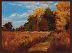 Fall Awakening by Christine Finney
