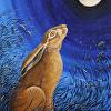 Moonwatching Hare