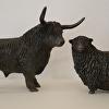 Highland Bull & Dartmoor Sheep