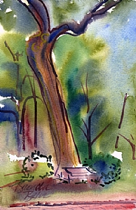 "Legendary poplar by Brenda Behr Watercolor ~ 9"" x 6"""