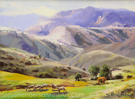Grazing In The Salmon River Mountains by Steve Henderson Oil ~ 9 x 12