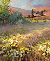 Field Of Dreams -- Licensed Art Print at Framed Canvas Art and Vision Art Galleries by Steve Henderson  ~  x