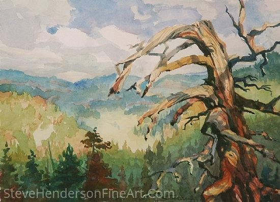 Sentinel by Steve Henderson Watercolor ~ 10 x 14