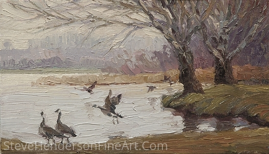 Geese on the Snake by Steve Henderson  ~  x