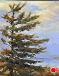 "Michigan Pine by Neil Walling Oil ~ 14"" x 11"""