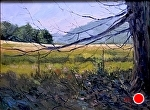 """Sunlit"" by Neil Walling Oil ~ 18""{ x 24"""