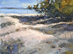 """Bowditch Point"" by Neil Walling Oil ~ 18"" x 24"""