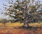 "Port Oneida Oak by Neil Walling Oil ~ 16"" x 20"""
