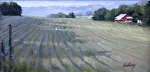 """Freshly Mown"" by Neil Walling Oil ~ 12"" x 24"""
