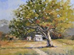 """Oak"" by Neil Walling Oil ~ 12"" x 16"""