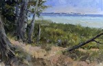 """Sunet Beach Path"" by Neil Walling Oil ~ 20"" x 30"""