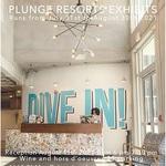 Lynda Sauls - WAG Plunge Resort Exhibit