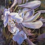 Diane St Germain - Louisiana Watercolor Society Juried Member Show