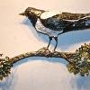 Magpie in the Juniper