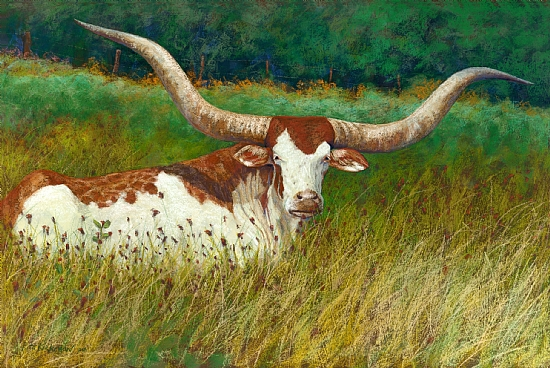 Two Long Horns by Rita Kirkman Pastel ~ 24 x 36 inches