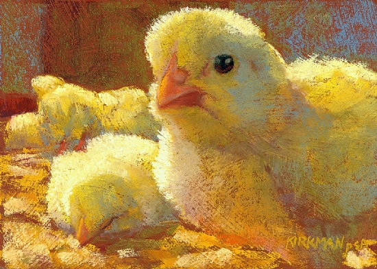 From a Chick's Viewpoint by Rita Kirkman Pastel ~ 5 x 7 inches