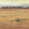 Desert Train