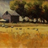 Hoyt's Barn - plein air painting