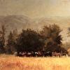 Horses on Rangeland