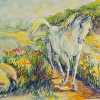 White Horse and Flowers