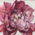 Mary Jane Zander - Chasing Colors